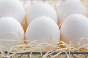 卵料理が脳を老けさせない